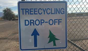 Treecycling Sign-web size.jpg