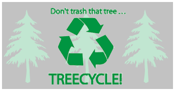 _treeCycle.png