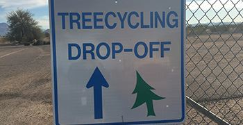 Treecycling Sign-web size2